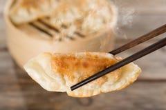中国开胃菜平底锅油煎的饺子 免版税图库摄影