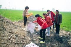 中国式坟墓 库存照片