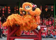 中国文化表现 免版税库存照片