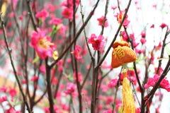 中国新年度装饰 库存图片