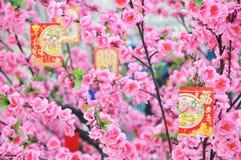 中国新年度装饰 免版税库存图片