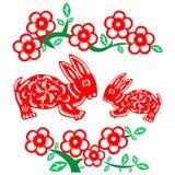 中国新的兔子年 库存图片