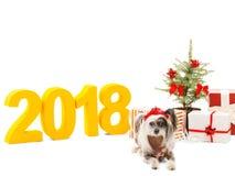 中国有顶饰近的圣诞树和箱子有礼物的在题字背景2018年 隔离 户内 库存照片