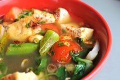 中国汤辣样式蔬菜 免版税图库摄影
