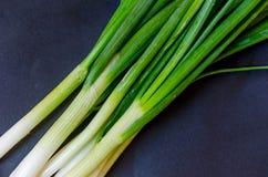 中国烹调调味大蒜姜重要材料葱弹簧 库存照片