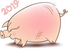 中国猪年 免版税图库摄影