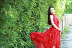 中国秀丽坐一座古老桥梁享受假期 库存图片