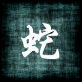 中国符号蛇黄道带 免版税库存照片