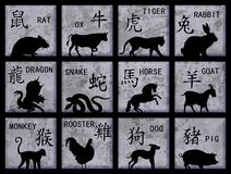 中国符号黄道带 库存图片