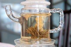 中国罐茶 免版税库存图片