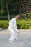 中国老拳击家 免版税库存照片