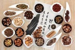 中国草药 免版税库存照片