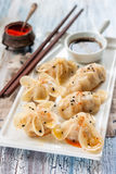 中国蒸汽dumplingsgioza以各种各样形成 免版税图库摄影