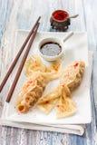 中国蒸汽dumplingsgioza以各种各样形成 免版税库存照片