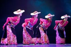 中国西藏全国舞蹈家 库存图片
