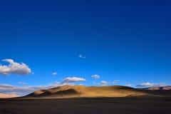 中国西藏雪云彩草 免版税库存照片