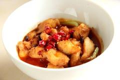 中国辣食物,鱼 图库摄影