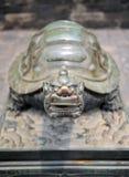 中国雕象乌龟 图库摄影