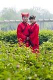中国韩式许多婚礼 免版税库存照片