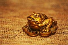 中国风水幸运的金钱青蛙 库存图片