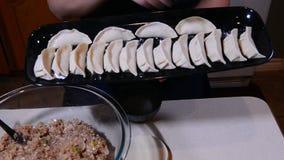 中国饺子猪肉 股票视频