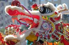 中国龙新年度 免版税库存照片