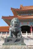 中国 北京 古铜色狮子雕象在故宫 图库摄影