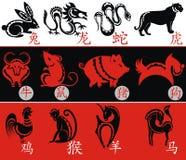 中国黄道带,十二个动物标志 免版税库存图片
