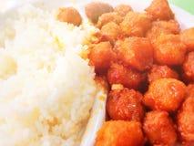 中国food— —米和肉 免版税库存图片