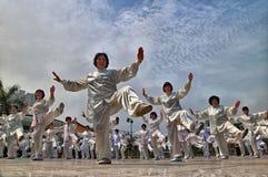 中国fu kung性能 免版税图库摄影