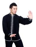 中国kung fu战斗机 免版税图库摄影
