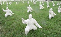 中国Kung Fu 图库摄影
