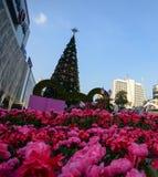 中央世界,曼谷 免版税库存图片