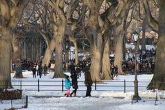 中央公园冬天 免版税库存照片