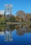 中央公园反映 库存图片