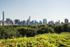 中央公园和曼哈顿skycscrapers 库存照片