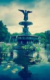 中央公园喷泉 库存照片