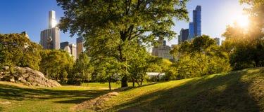 中央公园在与曼哈顿摩天大楼的夏天,纽约 免版税库存照片