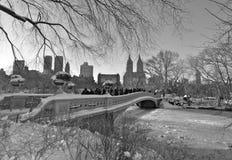 中央公园在冬天, NYC 免版税图库摄影