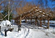 中央公园在冬天, NYC 库存照片