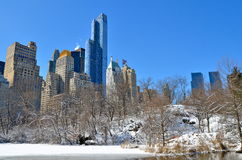 中央公园在冬天, NYC 免版税库存图片