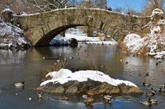 中央公园在冬天, NYC 免版税库存照片