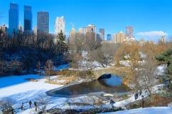 中央公园在冬天 库存照片