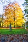 中央公园在秋天-小西部漂泊温泉镇Marianske Lazne Marienbad -捷克的中心 免版税库存图片