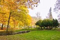 中央公园在秋天-小西部漂泊温泉镇Marianske Lazne Marienbad -捷克的中心 库存照片