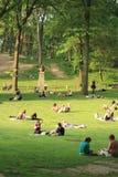 中央公园放松夏天 免版税库存图片