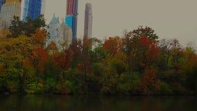 中央公园池塘 影视素材