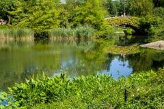 中央公园池塘 免版税库存照片