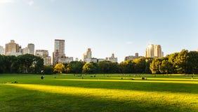 中央公园生活在纽约 免版税库存照片