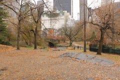 中央公园纽约桥梁nyc在秋天 库存图片